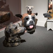 <p>Michael Ballou (American, b. 1952). Installation view of <i>Dog Years</i>, 2013. Blue foam, urethane foam, plaster, paint, dimensions variable. (Photo: Brooklyn Museum)</p>