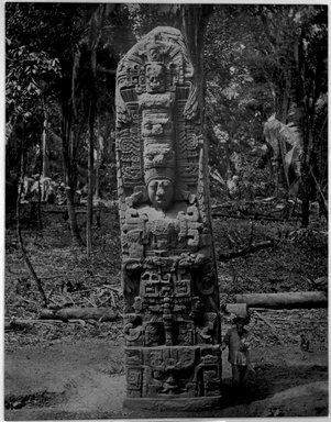 """""""Quiriguá. Stela D, North Face."""", 1883. B/w copy negative, 4 x 5in (10.2 x 12.8 cm). Brooklyn Museum, Maudslay. (F1435_M442_Maudslay_014.jpg)"""