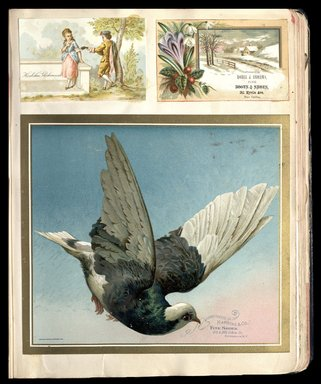 Brooklyn Museum: Scrapbook of trade cards, 1877-1894.