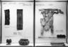 Primitive Gallery (installation)