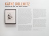 K&Atilde;&curren;the Kollwitz: Prints from the 