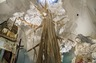 Swoon: Submerged Motherlands