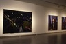 Western States Biennial. 2nd (39th Corcoran Biennial Exhibition of American Painting)