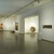 From the Collection: Contemporary Art., March 2, 2007 through February 24, 2008 (Image: DIG_E2007_From_the_Collection_09_PS2.jpg. Brooklyn Museum photograph, 2008)