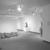 Nancy Graves: A Sculpture Retrospective, December 11, 1987 through February 29, 1988 (Image: PSC_E1987i014.jpg. Brooklyn Museum photograph, 1987)