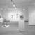 Nancy Graves: A Sculpture Retrospective, December 11, 1987 through February 29, 1988 (Image: PSC_E1987i023.jpg. Brooklyn Museum photograph, 1987)