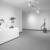 Nancy Graves: A Sculpture Retrospective, December 11, 1987 through February 29, 1988 (Image: PSC_E1987i025.jpg. Brooklyn Museum photograph, 1987)