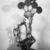 Nancy Graves: A Sculpture Retrospective, December 11, 1987 through February 29, 1988 (Image: PSC_E1987i031.jpg. Brooklyn Museum photograph, 1987)