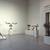 Nancy Graves: A Sculpture Retrospective, December 11, 1987 through February 29, 1988 (Image: PSC_E1987i120.jpg. Brooklyn Museum photograph, 1987)
