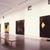 Donald Sultan, April 9, 1988 through June 13, 1988 (Image: PSC_E1988i052.jpg. Brooklyn Museum photograph, 1988)
