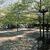Frieda Schiff Warburg Memorial Sculpture Garden, April 23, 1966 through May 2000 (Image: S06_SG1966_Sculpture_Garden_1980_1985_008.jpg. Brooklyn Museum photograph, 1980-85)