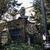 Frieda Schiff Warburg Memorial Sculpture Garden, April 23, 1966 through May 2000 (Image: S06_SG1966_Sculpture_Garden_1980_1985_019.jpg. Brooklyn Museum photograph, 1980-85)