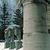 Frieda Schiff Warburg Memorial Sculpture Garden, April 23, 1966 through May 2000 (Image: S06_SG1966_Sculpture_Garden_1980_1985_037.jpg. Brooklyn Museum photograph, 1980-85)
