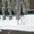 Frieda Schiff Warburg Memorial Sculpture Garden, April 23, 1966 through May 2000 (Image: S06_SG1966_Sculpture_Garden_1980_1985_046.jpg. Brooklyn Museum photograph, 1980-85)