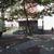 Frieda Schiff Warburg Memorial Sculpture Garden, April 23, 1966 through May 2000 (Image: S06_SG1966_Sculpture_Garden_installation_1981_003.jpg. Brooklyn Museum photograph, 1981)