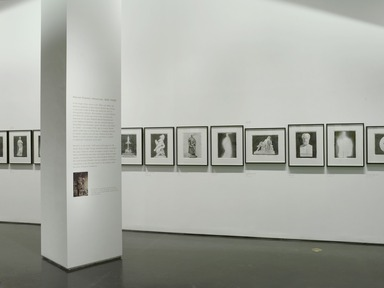 Patricia Cronin: 'Harriet Hosmer, Lost and Found', June 5, 2009 through January 24, 2010 (Image: .  photograph, )