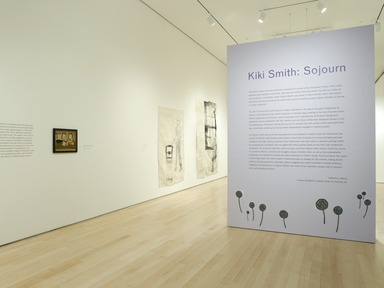 Kiki Smith: Sojourn, February 12, 2010 through September 12, 2010 (Image: .  photograph, )