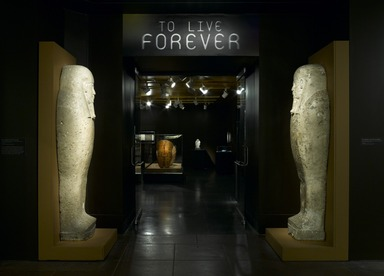 To Live Forever: Art and the Afterlife in Ancient Egypt, February 12, 2010 through May 2, 2010 (Image: .  photograph, )