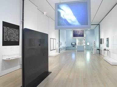 Materializing 'Six Years': Lucy R. Lippard and the Emergence of Conceptual Art, September 14, 2012 through February 17, 2013 (Image: .  photograph, )