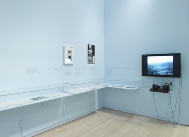 Brooklyn Museum: Materializing 'Six Years': Lucy R. Lippard and the Emergence of Conceptual Art