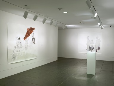 Work of Art: Kymia Nawabi, December 22, 2011 through February 5, 2012 (Image: .  photograph, )
