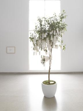 Wish Tree, November 15, 2012 through January 6, 2013 (Image: .  photograph, )