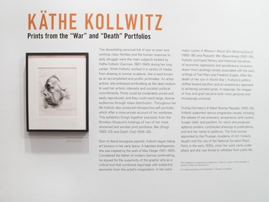 Käthe Kollwitz: Prints from the 'War' and 'Death' Portfolios, March 15, 2013 through November 10, 2013 (Image: .  photograph, )