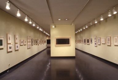 Curator's Choice: The Eight at The Brooklyn Museum, June 26, 1992 through September 21, 1992 (Image: .  photograph, )