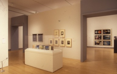 National Print Exhibition, 26th: Digital: Printmaking Now, June 22, 2001 through September 2, 2001 (Image: .  photograph, )