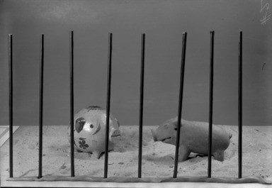 Animals Under Ten Inches, May 17, 1940 through September 30, 1940 (Image: .  photograph, )