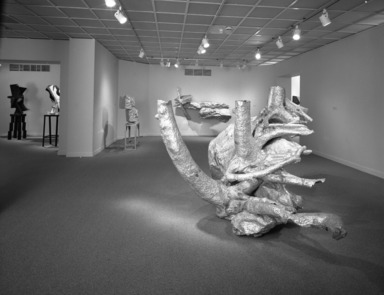 Brooklyn Museum: 4 Americans: Aspects of Current Sculpture
