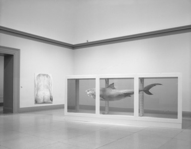 Brooklyn Museum: Sensation: Young British Artists from the Saatchi Collection