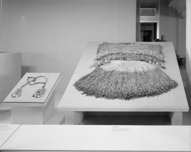 Brooklyn Museum: Hall of the Americas (installation)