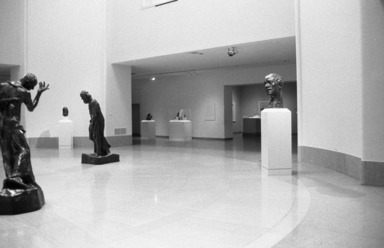 Brooklyn Museum: Rodin: The Cantor Gift to The Brooklyn Museum