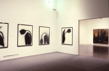 Donald Sultan, April 9, 1988 through June 13, 1988 (Image: .  photograph, )