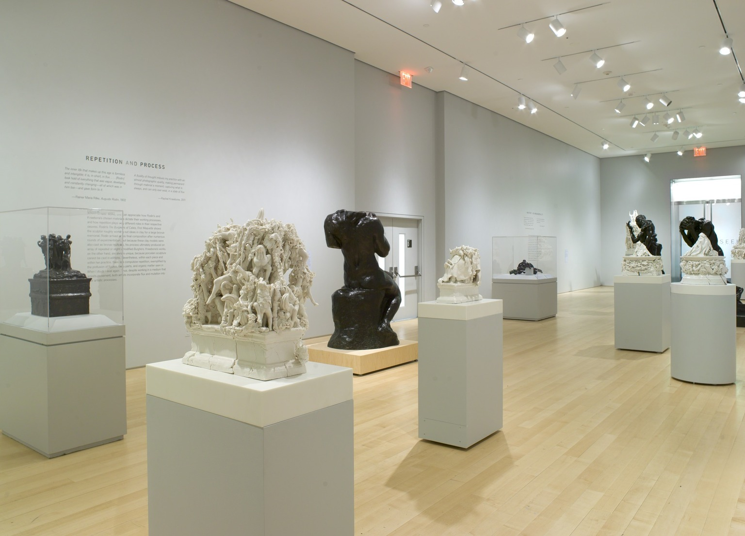 Brooklyn Museum: Rachel Kneebone: Regarding Rodin