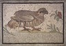 Mosaic of Partridge