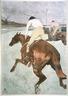 The Jockey (Le Jockey)