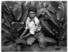 Child Labor in Tobacco Field, Connecticut