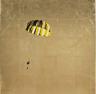 Yellow and Black Parachute