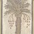 Roman. Mosaic of Date Palm Tree, 6th century C.E. Stone and mortar, With Frame: 1 3/8 x 34 5/8 x 74 3/16 in. (3.5 x 87.9 x 188.4 cm). Brooklyn Museum, Museum Collection Fund, 05.14. Creative Commons-BY (Photo: Brooklyn Museum, 05.14_detail_top.jpg)