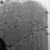 Relief of King Sobekhotep III, ca. 1744-1741 B.C.E. Quartzite, 60 1/2 x 39 x 2 1/2 in., 370 lb. (153.7 x 99.1 x 6.4 cm, 167.83kg). Brooklyn Museum, Charles Edwin Wilbour Fund, 77.194a-c. Creative Commons-BY (Photo: Brooklyn Museum, 77.194_negC_bw_IMLS.jpg)