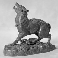 Brooklyn Museum: Wolf Taken in a Trap (Loup pris au piège)