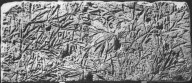 Brooklyn Museum: Relief of Vetch Plant