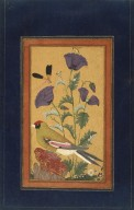 Brooklyn Museum: Finch, Poppies, Dragonfly, and Bee