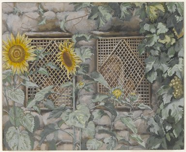 James Tissot (French, 1836-1902). Jesus Looking through a Lattice (Jésus regardant à travers le treillis), 1886-1894. Opaque watercolor over graphite on gray wove paper, Image: 5 11/16 x 6 15/16 in. (14.4 x 17.6 cm). Brooklyn Museum, Purchased by public subscription, 00.159.11