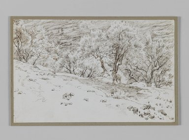 James Tissot (French, 1836-1902). Olive Trees, Valley of Hinnom (Oliviers, vallée de Hinon), 1886-1887 or 1889. Pen and ink on paper mounted on board, Sheet: 4 11/16 x 7 5/16 in. (11.9 x 18.6 cm). Brooklyn Museum, Purchased by public subscription, 00.159.385