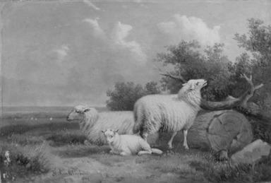 Jacob van Dieghem (Belgian, 19th century). Sheep, 1869. Oil on panel, 6 9/16 x 9 1/2 in. (16.7 x 24.1 cm). Brooklyn Museum, Bequest of Caroline H. Polhemus, 06.278