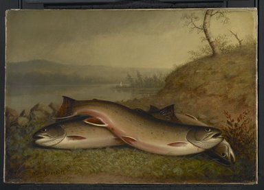 Walter M. Brackett (American, 1823-1919). Trout, 1867. Oil on canvas, 14 x 20 1/16 in. (35.5 x 51 cm). Brooklyn Museum, Bequest of Caroline H. Polhemus, 06.321