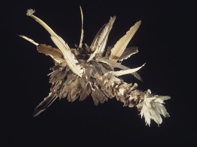 Pomo (Native American). Doctor's Headdress (guk-tsu-shua), 1906-1907. Crow feather, redbud or dogwood, wood, cotton string, Indian hemp, 25 x 39 x 29 in. (63.5 x 99.1 x 73.7 cm). Brooklyn Museum, Museum Expedition 1908, Museum Collection Fund, 08.491.8952. Creative Commons-BY